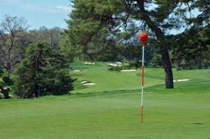 The iconic Merion pin flags