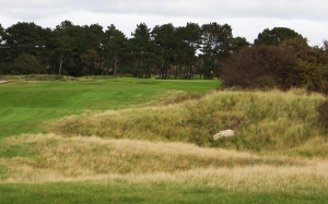 This picture perfectly sums up the course - undulating terrain and horrible rough.